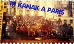 111 Kanak à Paris, par Edwige Diohoué