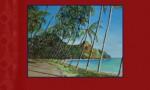 Thio, De mon enfance aux évènements de 1984 en Nouvelle-Calédonie